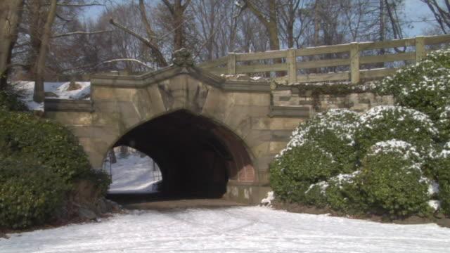 zo, ms, bridge in snowy prospect park, new york city, new york, usa - arch bridge stock videos and b-roll footage