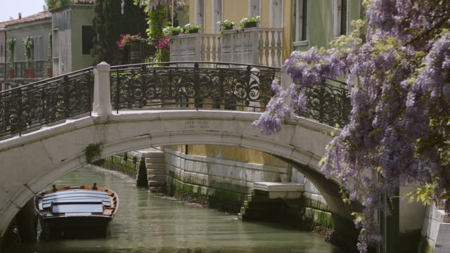 ms bridge over grand canal / venice, italy - arch bridge stock videos and b-roll footage