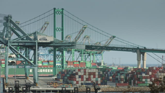Bridge through Shipping Cranes