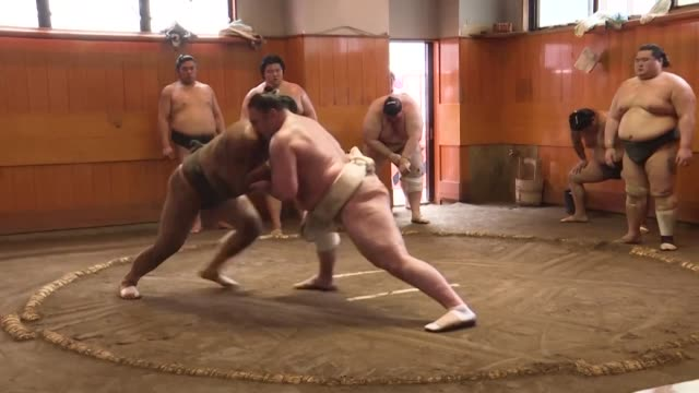stockvideo's en b-roll-footage met bright blue eyes and western features instantly mark out georgia born levan gorgadze as different in the traditional japanese sport of sumo wrestling - worstelen
