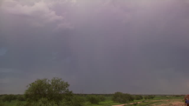 bright, branched forked lightning strikes ground from daytime thunderstorm during arizona monsoon season, usa - forked lightning stock videos & royalty-free footage