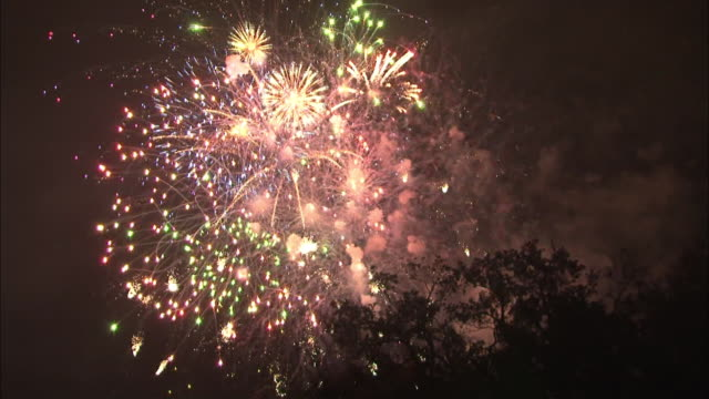 Bright fireworks explode and sparkle in the night sky.