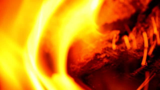 明るい炎 - カバノキ点の映像素材/bロール