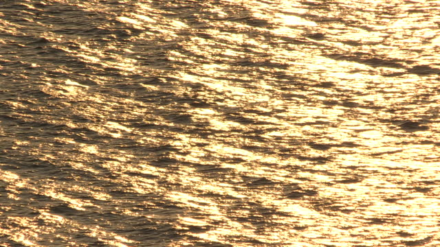 bright golden seawater reflecting a sunset - full frame stock videos & royalty-free footage