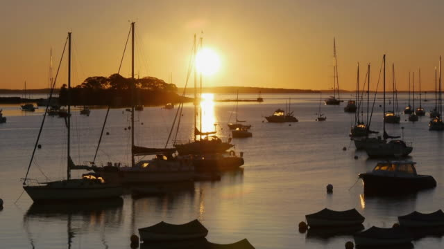 T/L MS Bright Sun rising above horizon, many sailboats in Camden, Maine harbor