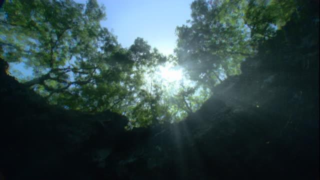 vídeos de stock, filmes e b-roll de a bright sun shines above a cenote pool in yucatan, mexico. available in hd. - yucatán