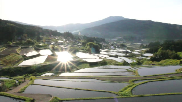 Bright sunlight shines across village homes on the edges of the Sakaori Rice Terrace paddies.