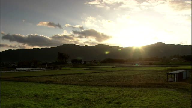 bright sunlight shines at sunset over rice paddies with mountain silhouette in background - 田畑点の映像素材/bロール