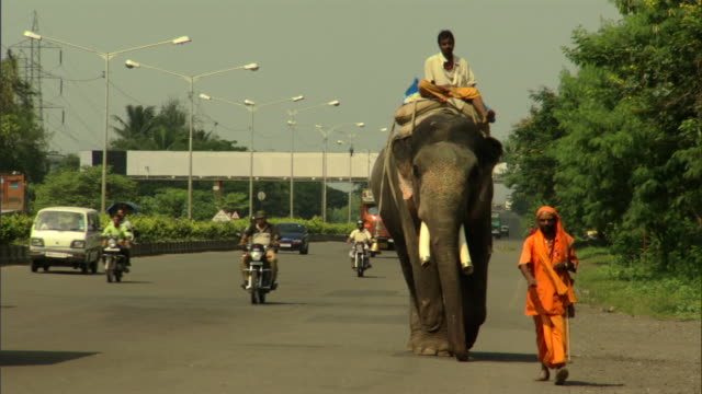 ws zo brightly dressed man walking, followed by another man riding elephant along highway, pune, maharashtra, india - domestic animals stock videos & royalty-free footage