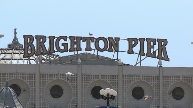 cu brighton pier sign, seagulls flying in foreground / brighton, united kingdom - ブライトン パレスピア点の映像素材/bロール