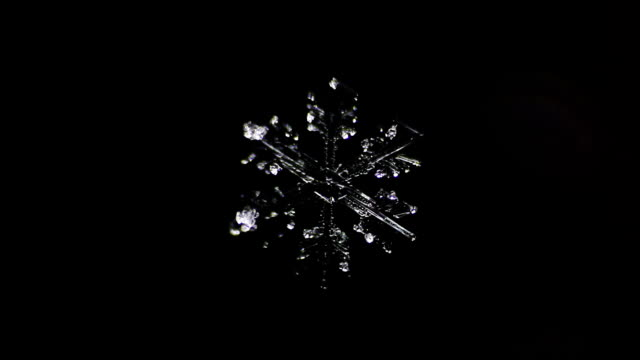 brilliant snowflake melting on a dark background