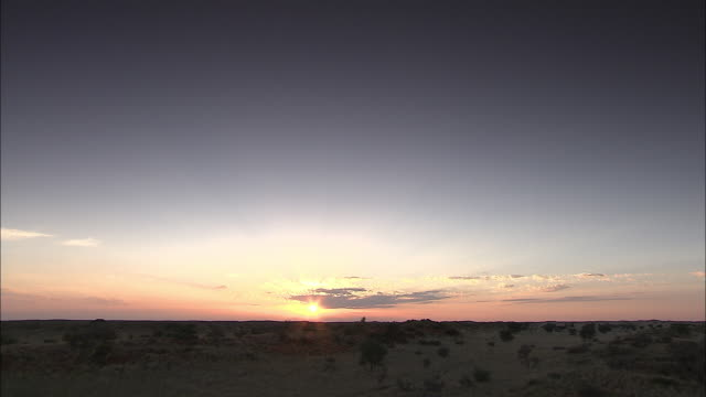 vídeos de stock, filmes e b-roll de a brilliant sun glows above the horizon in the kalahari desert. - deserto de kalahari