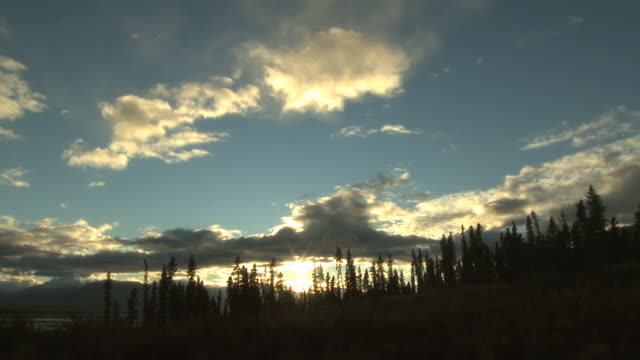a brilliant sun sets behind passing clouds and evergreens. - アラスカ点の映像素材/bロール