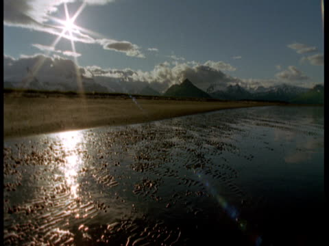 a brilliant sun shines on a beach at low tide. - ebbe stock-videos und b-roll-filmmaterial