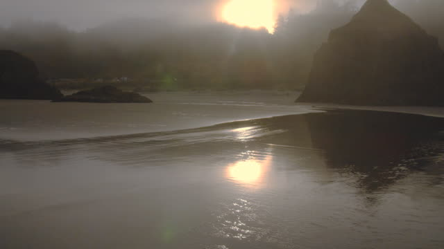 a brilliant sun shines through fog and reflects on the wet beach near pistol river, oregon. - wet wet wet stock videos & royalty-free footage