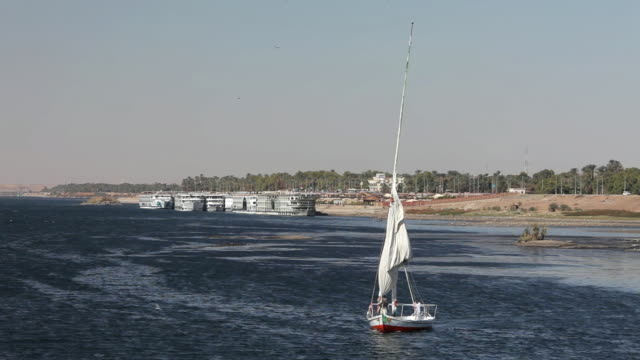 Bringing In Sail On a Felucca on the River Nile
