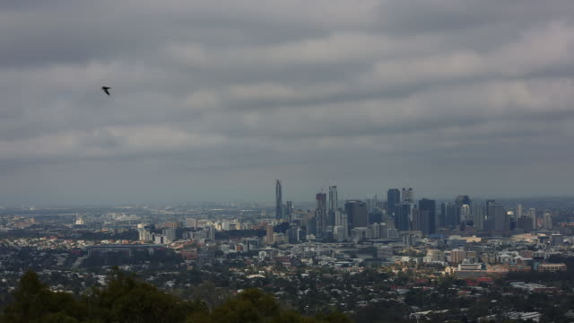 Brisbane CBD from Mount Cootha.