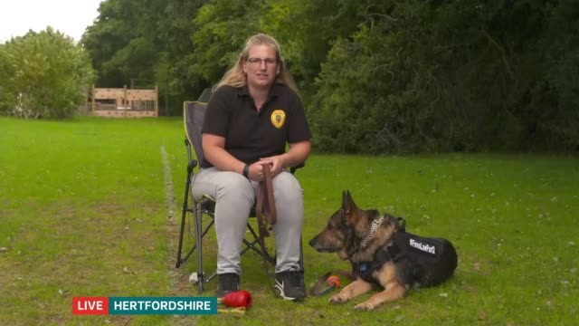 vidéos et rushes de 'britain's got talent' finalist finn named ambassador for new charity to support uk's police dogs; england: london: gir: int gemma wardell live 2-way... - concurrent