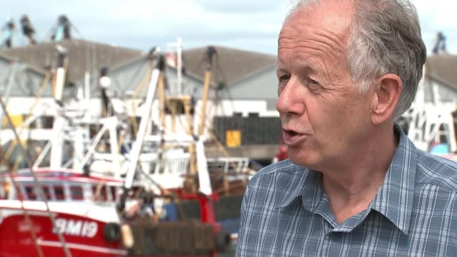 british fisherman demand more protection after clashes with french boats over scallops england devon brixham ext scallops reporter talking to jim... - 無脊椎動物点の映像素材/bロール