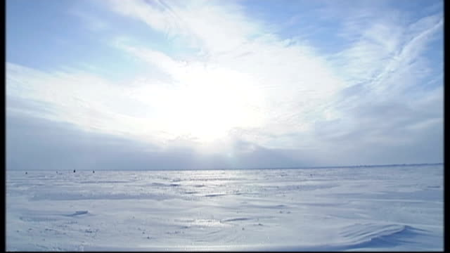 british schoolboy killed in polar bear attack 592008 svalbard ice and snow on flat ice cap landscape polar bear along ice - svalbard and jan mayen stock videos & royalty-free footage