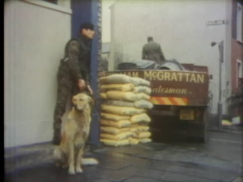a british soldier and his dog watch as members of the ulster defense association unload bags on concrete - united states and (politics or government) stock videos & royalty-free footage