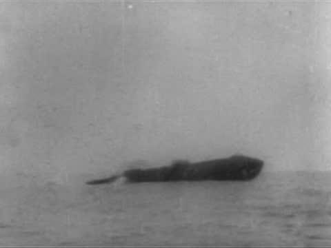 british steamer patagonia sunk by german u 35 submarine - 1917 stock videos & royalty-free footage