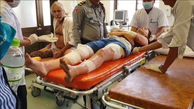 British tourist Fiona Childs was attacked by a water buffalo in Cambodia