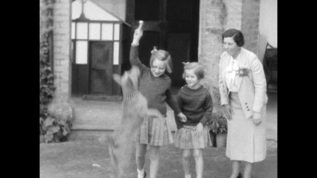 vídeos de stock e filmes b-roll de british woman with two girls playing with a dog in garden beside house girls jumping rope sitting at small tables studying as woman looks onfrom the... - biscoito de cachorro