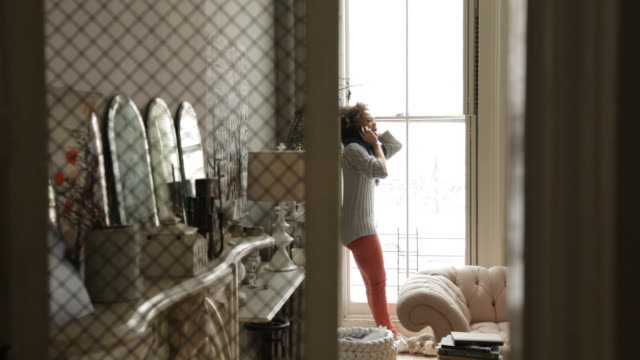 broad view through screen partition of woman talking on cell phone by window in a tastefully decorated brownstone - screen partition stock videos and b-roll footage