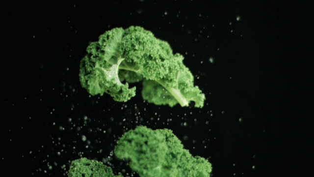 vidéos et rushes de broccoli being thrown upwards in super slow motion - crucifers
