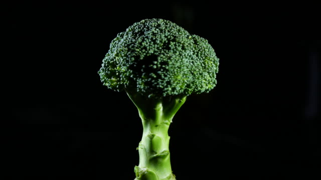 broccoli turning on black background - broccoli stock videos & royalty-free footage