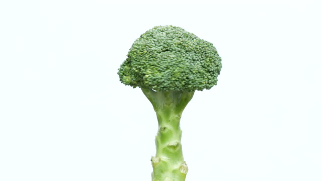 broccoli turning on white background - broccoli stock videos & royalty-free footage