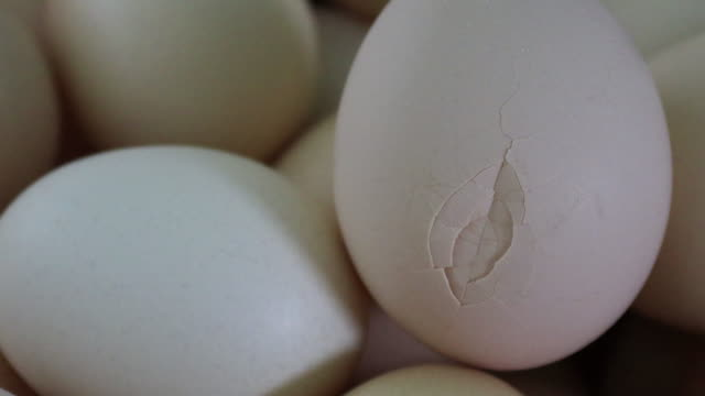 a broken egg - cracked stock videos & royalty-free footage
