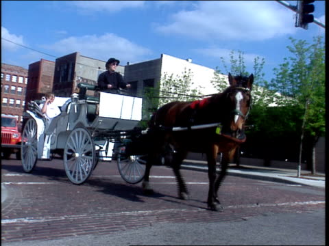 roll footage of a horse and carriage on the street in omaha. - omaha stock videos & royalty-free footage