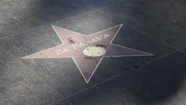 roll , pan and zoom of gabor's star and flowers - anna nicole smith stock videos & royalty-free footage