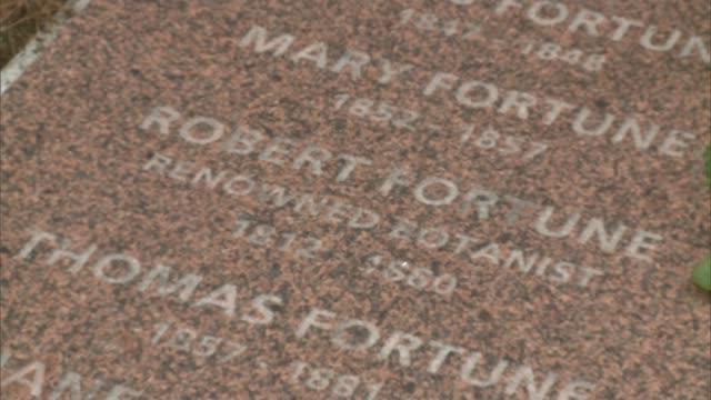 vídeos de stock e filmes b-roll de brompton cemetery restoration completed england london brompton brompton cemetery lee snashfold interview sot cutaway gravestone general views... - cemitério