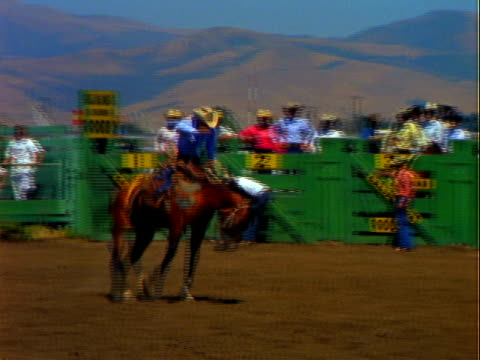 bronc riding competition at rodeo / men riding bucking bronco horses man falling off horse onto ground salinas california rodeo on january 01 1967 in... - bucking bronco stock videos & royalty-free footage