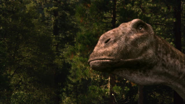 cgi, cu, brontosaurs, headshot - paleozoology stock videos and b-roll footage