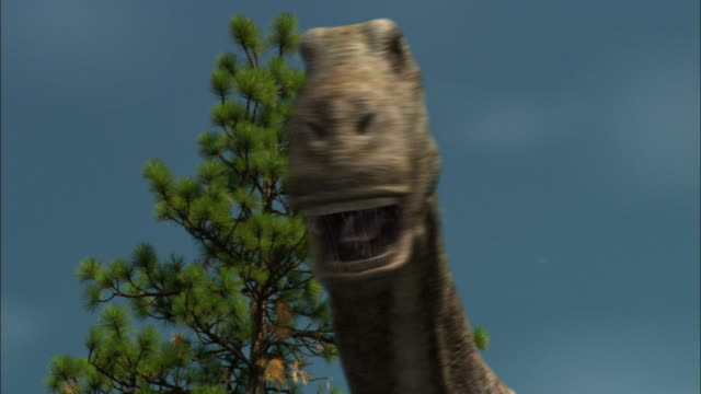 cgi, cu, brontosaurs roaring, headshot - paleozoology stock videos and b-roll footage