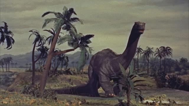 cgi, ms brontosaurus dinosaur in prehistoric landscape - dinosaur stock videos and b-roll footage