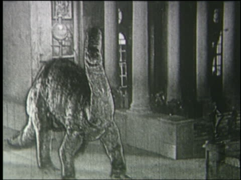 b/w 1925 brontosaurus roaring in front of large building with columns in london - 1925 stock videos & royalty-free footage