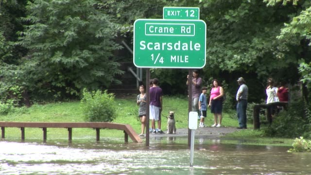 bronx river parkway after flooding was caused by hurricane irene / onlookers take pictures of flood scene / people walking along flooded bronx river... - hurricane irene stock videos & royalty-free footage