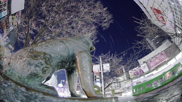 Bronze statue of Hachi-ko in Shibuya and the star trajectory: SFX; Time Lapse.
