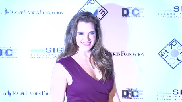 brooke shields at 2014 room to grow spring gala at capitale on april 8, 2014 in new york city. - ブルック シールズ点の映像素材/bロール