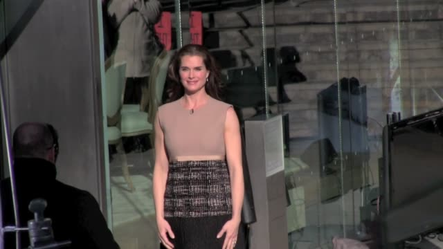 brooke shields at avery fisher hall in new york on - brooke shields stock videos and b-roll footage