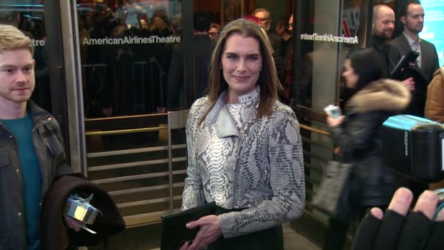 brooke shields at on the twentieth century opening night at roundabout theatre company's american airlines theatre on march 12 2015 in new york city - brooke shields stock videos and b-roll footage