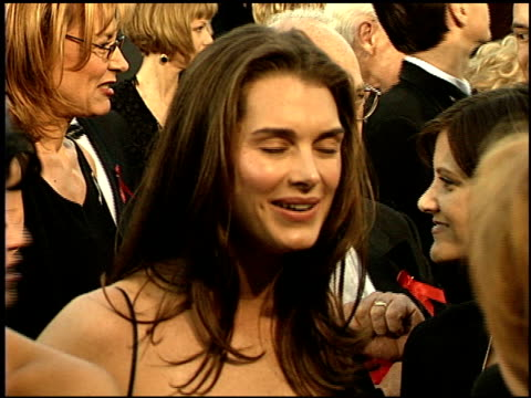 brooke shields at the 1999 screen actors guild sag awards at the shrine auditorium in los angeles california on march 7 1999 - brooke shields stock videos and b-roll footage