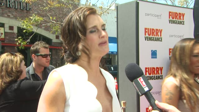 brooke shields at the 'furry vengeance' premiere at los angeles ca. - ブルック シールズ点の映像素材/bロール