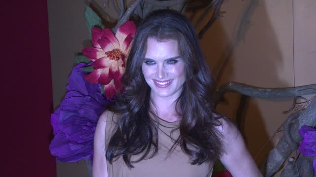 Brooke Shields at the MoMA's Second Annual Film Benefit Honoring Tim Burton at New York NY
