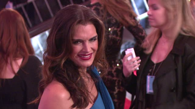 brooke shields at the 'the model as muse embodying fashion' costume institute gala at the metropolitan museum of art arrivals at new york ny - brooke shields stock videos and b-roll footage